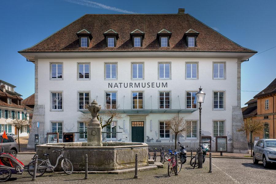 Naturmuseum Solothurn